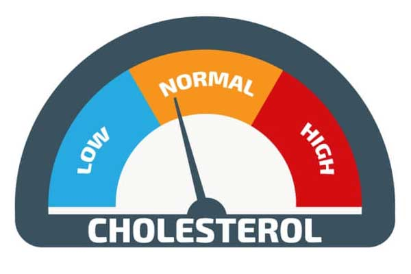 LDL and HDL cholesterol