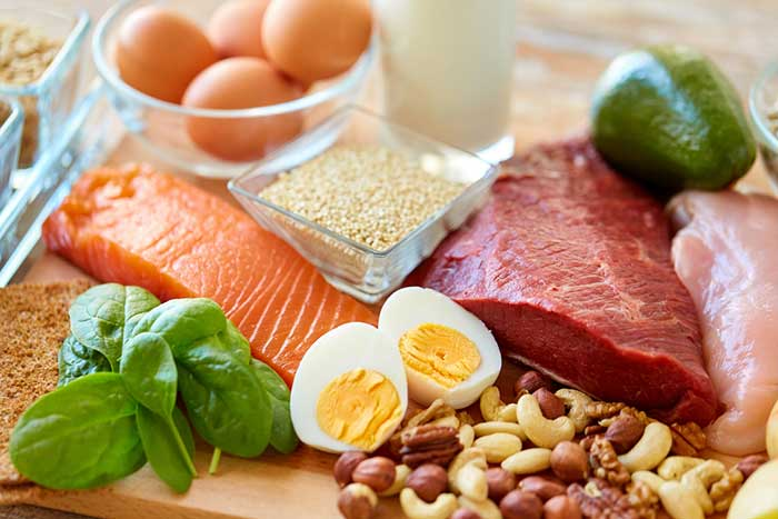 foods that contain a lot of protein