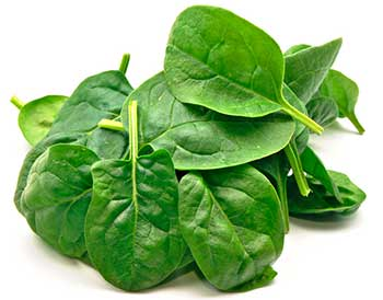 spinach high in antioxidants