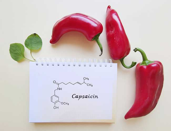Capsicum gets its spicy taste and distinctive aroma from a compound called capsaicin