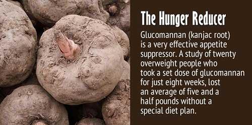 hunger reducer