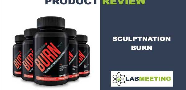 Sculptnation Burn review