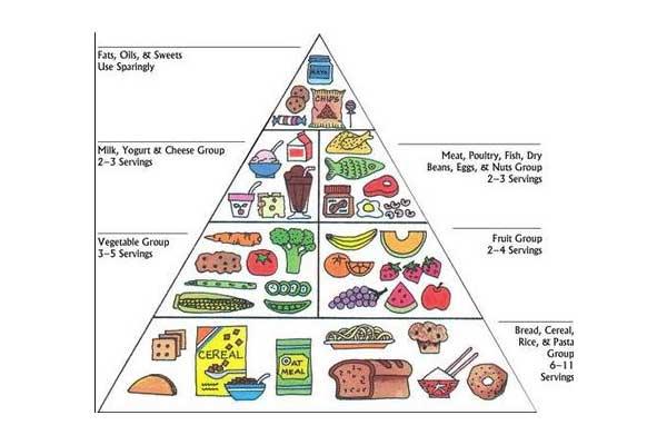 Pegan food pyramid